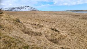 Stæðilegar tóftir bæjarhúsa ásamt garðlögum er enn að finna í Græntanga.