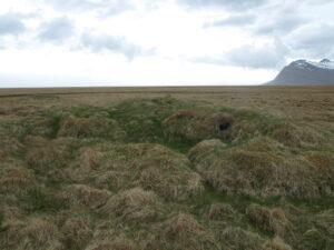 Vallargróin tóft við lækjarbakkann. Mögulega er hún vitnisburður um smábýli.