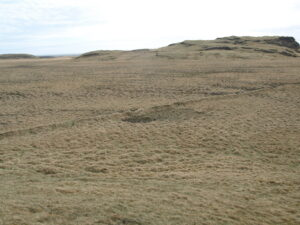 Miklir túngarðar liggja til suðurs niður í Helluhraunslandið.